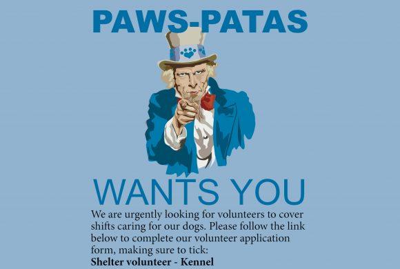 Kennel volunteers urgently needed!