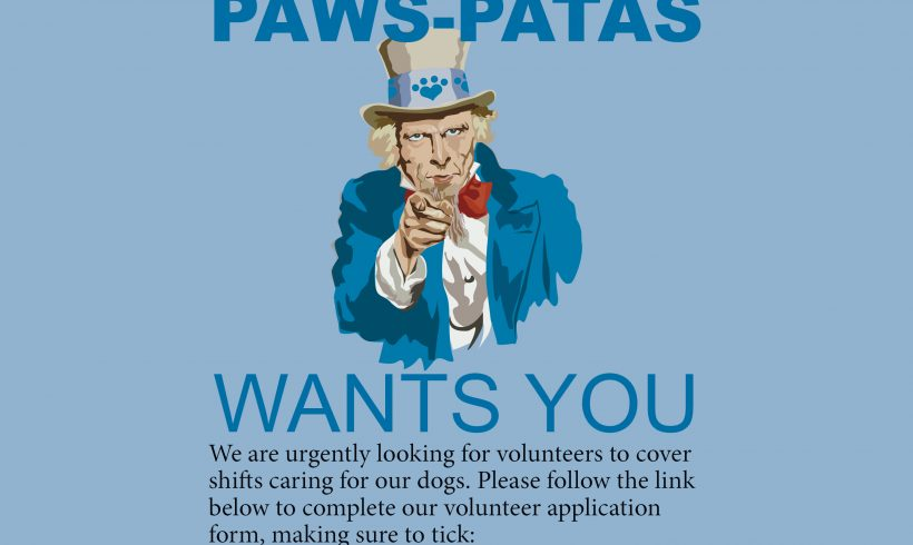 Kennel volunteers urgently needed!